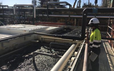 LIFE REWATCH prototype is fully operational and treats petrochemical wastewaters